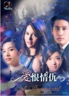 泰國【愛恨情仇】泰語中字 全25集3碟DVD
