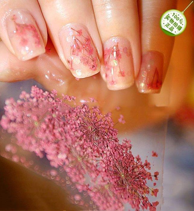 美甲干花12盒套裝 美甲裝飾品 彩色花瓣指甲鉗飾DIY飾品貼花