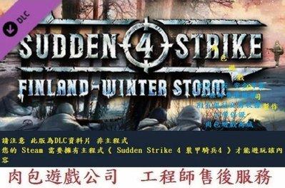 PC版資料片肉包 STEAM 裝甲騎兵4 Sudden Strike 4 - Finland: Winter Storm