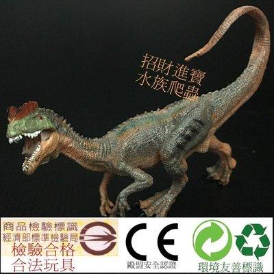 雙冠龍 雙脊龍 雙棘龍 恐龍 模型 仿真 動物 GK 玩具 侏羅紀 爬蟲類 另售 雷龍 暴龍 三角龍 腕龍 迷惑龍 劍龍