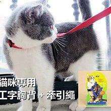 [洄瀾雜貨舖] 貓咪專用胸背 遛貓牽引繩 遛貓繩 貓用牽繩 貓工字胸背帶+牽引繩(牽繩+胸背套=貓咪胸背組) 整組 現貨