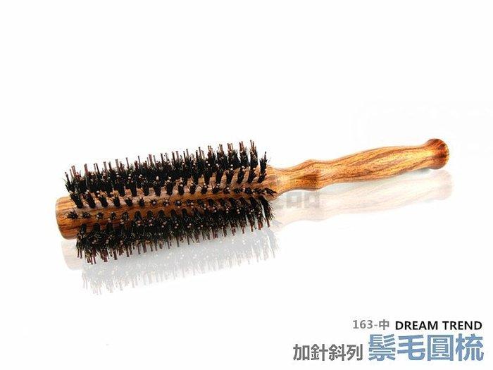 【DT髮品】專業級 Q派 純鬃毛加針斜列圓梳 (中) 豬鬃毛 台灣製造 另售 按摩梳 尖尾梳【0313113】
