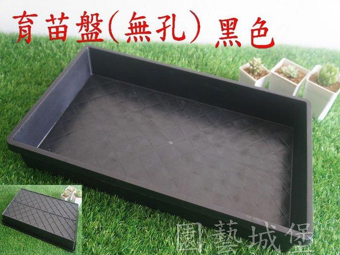 【園藝城堡】育苗盤(無孔) 黑色 育苗箱 栽培盤