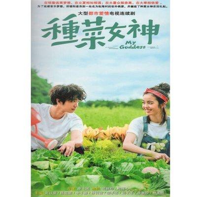 現代電視劇種菜女神DVD碟片光盤24集完整版劉以豪陳庭妮歡 精美盒裝