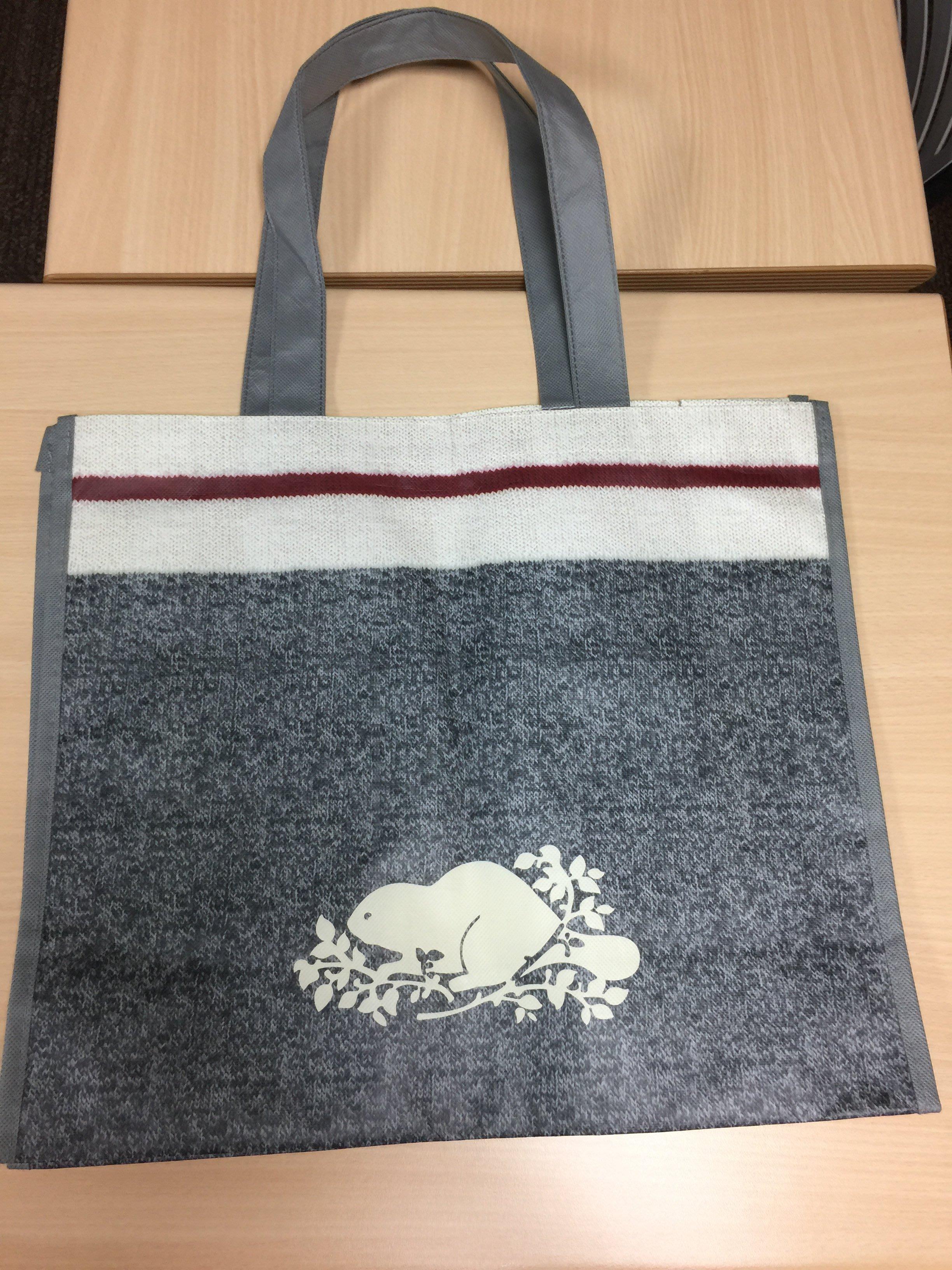 ROOTS 環保購物袋 (全新)