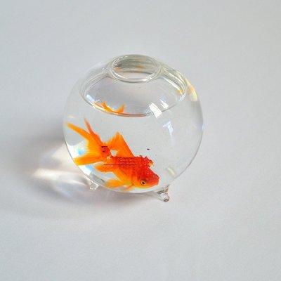 ~喵喵的小窩~歐式 玻璃花瓶 透明玻璃水培花器 家居裝飾 養魚插花兩用