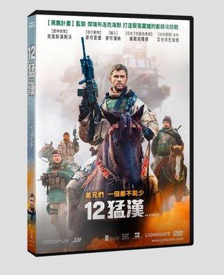 [影音雜貨店] 台聖出品 – 12猛漢 DVD – 由克里斯漢斯沃、麥可夏儂、麥可潘納主演 – 全新正版