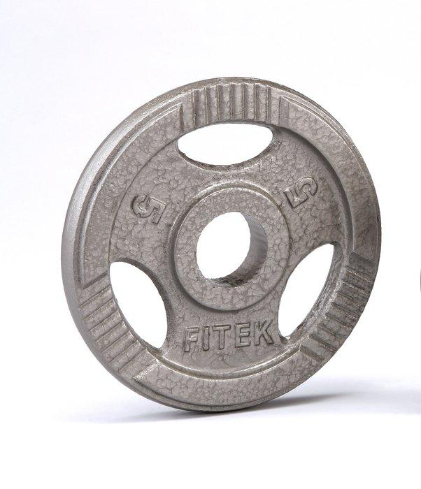 【Fitek 健身網】現貨28m/m☆5公斤槓片☆5KG鑄鐵手抓孔槓片☆舉重、健力、重量訓練適用