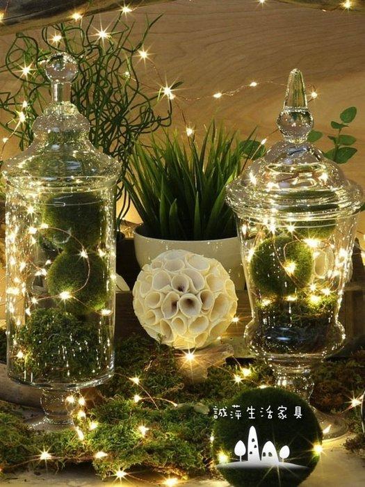 ~誠萍生活家具~LED螢火蟲線燈 節日串燈 星星燈串 聖誕樹燈 裝飾燈 照明 氣氛(十入) 直購價$1300