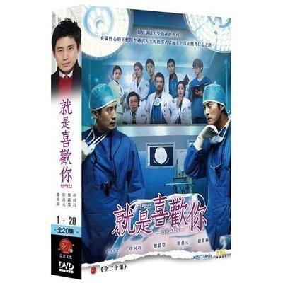 <<影音風暴>>(韓劇1516)就是喜歡你 DVD 全20集 申河均/鄭進永(下標即賣)12