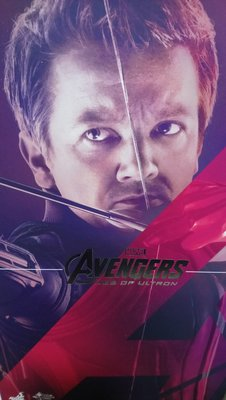 Hottoys Avengers-Age of Ultron 鷹眼Hawkeye MMS289 1/6 Figure