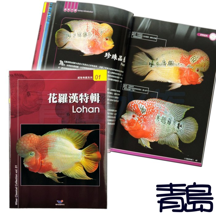 AB。。。青島水族。。。A1009016台灣威智出版社-羅漢玩家必備參考書籍 圖文並茂 提供花羅漢飼養管理==花羅漢特輯