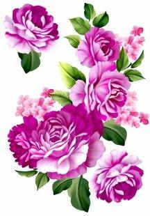 小妮子的家@手繪系列水移畫/古典玫瑰轉印貼紙/家具貼~2.23