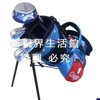 【新視界生活館】正品 高爾夫兒童球桿 全套golf套桿 3-12歲 男女初學桿