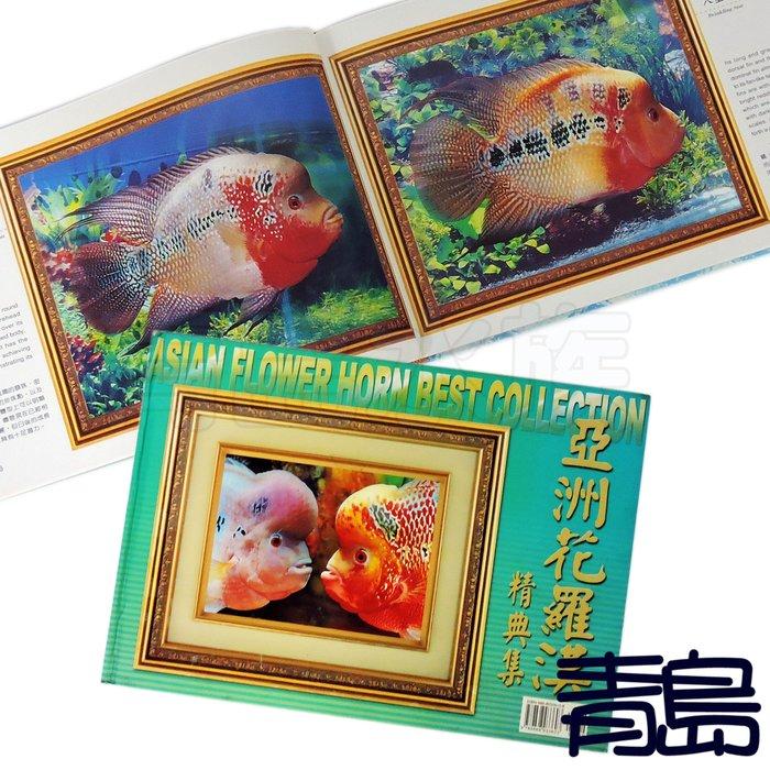 五1↓↓。。。青島水族。。。展新文化出版社-----亞洲花羅漢精典集 水族工具書