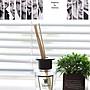 韓國 W.Dressroom 第五大道天然室內香氛擴香瓶 70ml  四款任選~ 現貨!✪棉花糖美妝香水✪