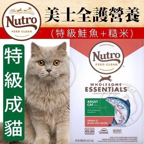 【🐱🐶培菓寵物48H出貨🐰🐹】美士全護營養》特級成貓(鮭魚+糙米)配方-17kg特價3799元自取不打折