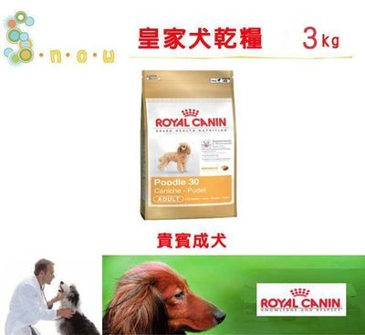 SNOW的家【訂購】法國皇家 BHN 貴賓成犬 PDA 3KG(10530104