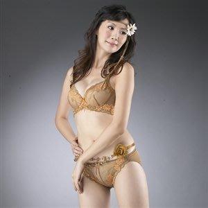 轉售正品【東森購物】Jecy Anga甜蜜嬌娃蠶絲胸罩(棕色 )(85E)原價:1280