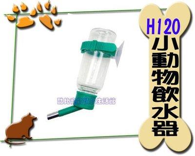 ◎酷比寵物精品生活館─1館◎禾其H120小動物專用飲水器.藍/綠/粉紅3色