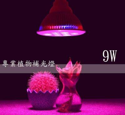 LED 9W 植物燈 高功率par燈 水草燈 多肉 莖葉蔬菜 開花植物 室內栽培 水耕 園藝 E27頭