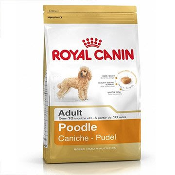 ☆SNOW的家☆法國皇家 PRP30貴賓成犬1.5kg(80070257