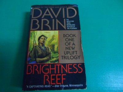 大熊舊書坊- David Brin Brightness Reef    0553573306 泛黃水痕 -昇16