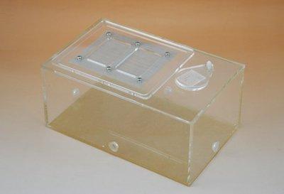 【新奇屋】螞蟻連結活動區餵食盒 螞蟻石膏巢盒 昆蟲觀察飼養盒 爬蟲昆蟲飼養盒 蜘蛛蠍子養殖 微生態觀察