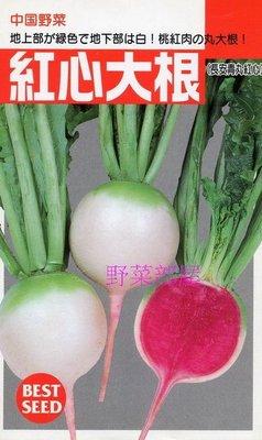 【野菜部屋~蔬菜種子】I22 日本紅心大根種子1.1公克(約80粒) , 很特別的蘿蔔 , 相當美味 , 每包12元~
