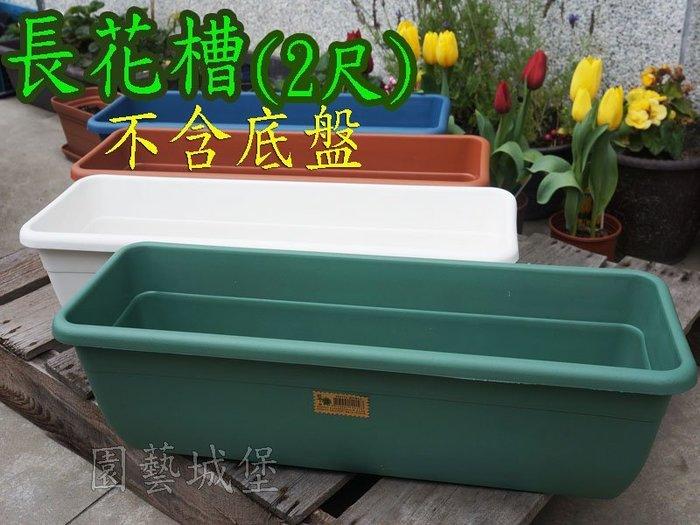 【園藝城堡】 長花槽(2尺)~不含底盤《白色下標區》 長型花槽塑膠長盆 長型方盆 居家園藝