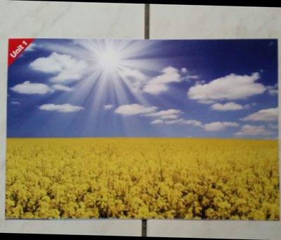 國小中高英語句型圖示閃卡HOW'S THE WEATHER?It's sunny.A4 尺寸,  10張一包