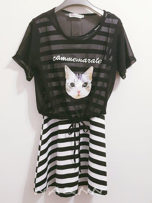 【鄰家女孩】現貨 韓版 可愛 貓咪 雪紡 + 洋裝 兩件組 顯瘦 小清新 百搭 分開式 大碼