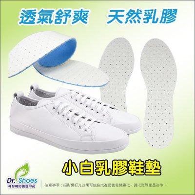 小白鞋乳膠鞋墊 ALL STAR帆布鞋 阿甘鞋 懶人鞋 superga 高密度天然乳膠╭*鞋博士嚴選鞋材*╯