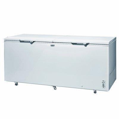 SANLUX 台灣三洋 【SCF-616G 】 616公升 雙門 上掀式 冷凍櫃  冷凍櫃
