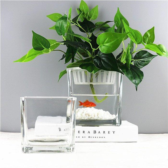 #創意 裝飾品 居家水培植物玻璃瓶方形玻璃花瓶透明綠蘿睡蓮銅錢草水養花盆器皿容器
