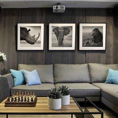 C - R - A - Z - Y - T - O - W - N 大象獅子老虎犀牛掛畫黑白攝影裝飾畫北歐簡約客廳沙發畫