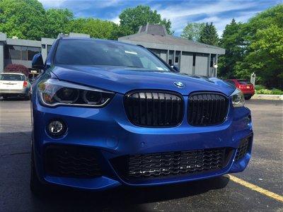 【歐德精品】BMW原廠 F48 X1 高光黑水箱護罩 黑鼻頭 水箱罩 X1黑鼻頭 X1水箱罩 18i 20i