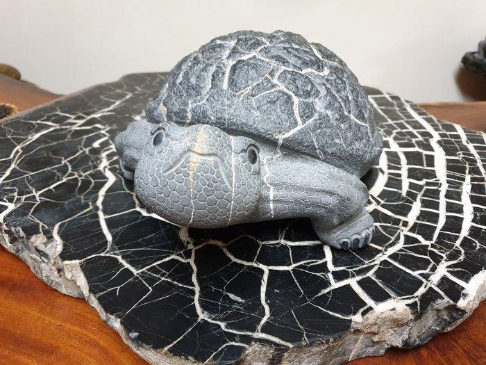 上和茶軒*台灣本土石雕龜作家 : 天淪人 老師*黑膽石皺皮~限自取!