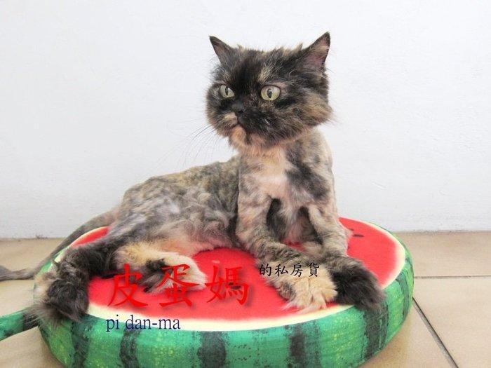 ~皮蛋媽的私房貨~BED0080可拆洗睡床睡墊~水果圓型睡窩~保暖寵物窩 寵物床 貓窩狗窩