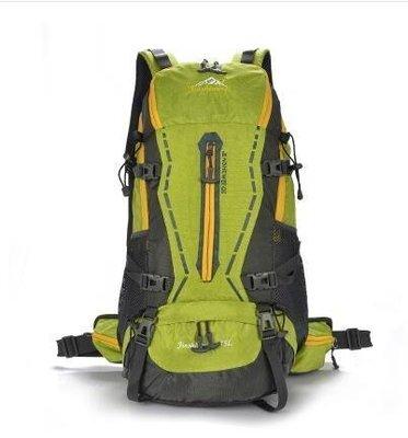 【優上精品】戶外旅遊登山雙肩包45L男女懸浮支架防水旅行徒步背包野營背囊(綠(Z-P3109)