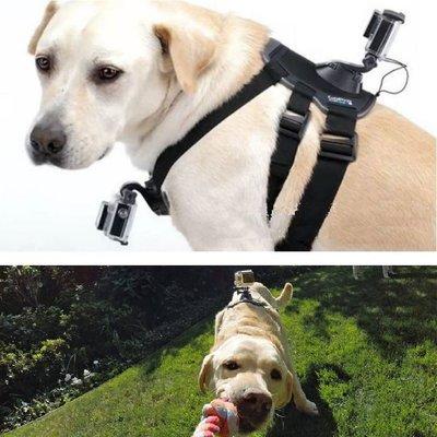 【極品生活】狗胸帶 ~狗背帶 寵物背帶 適用於大部分運動攝影機如GOPRO SJ4000 小蟻 SQ13 SQ12 R3