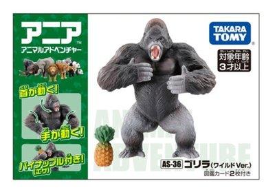 【阿LIN】49962A ANIA AS-36 黑猩猩 TAKARA TOMY 多美動物模型 ST安全玩具