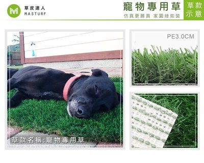 【草皮達人】人工草皮PE-3CM 每平方公尺NT800元寵物草皮 居家 寵物墊
