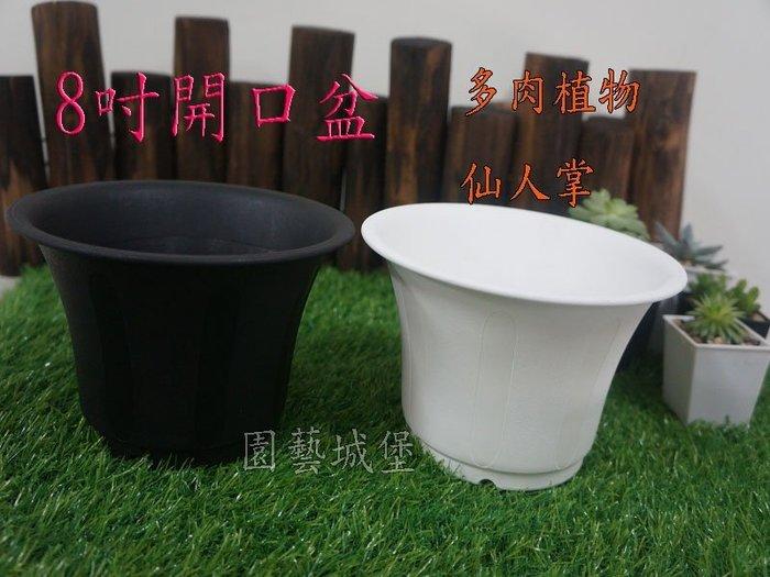 【園藝城堡】《黑色下標區》8吋開口盆 多肉植物 仙人掌 花盆 塑膠花盆 圓盆 造型盆 居家園藝