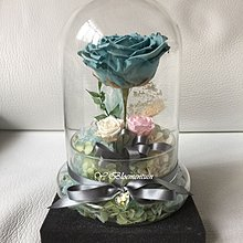 The Fairy Tales ~ Preserved ROSE Collection 玻璃瓶擺設