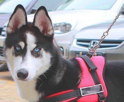 寵物防爆衝胸背帶 工作犬背帶 導盲犬胸背牽引帶 馬鞍帶 拉繩 (XL號)