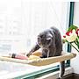 貓吊床掛式掛床夏天貓窩貓咪窗戶秋千吸盤式...