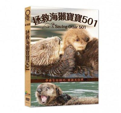 合友唱片 面交 自取 拯救海獺寶寶501 (DVD) Saving Otter 501
