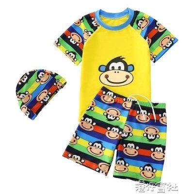 兒童泳衣分體中大童男童泳褲男孩寶寶速幹小童游泳衣泳裝套裝