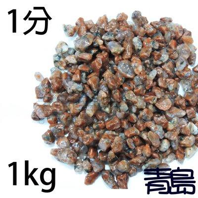 PN。。。青島水族。。。A級紅花崗(珊瑚紅石)==1分-1kg(散裝) 新北市